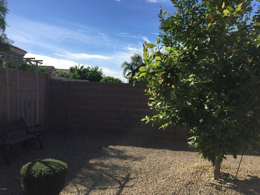 MLS 5576780 15209 N 135TH Drive, Surprise, AZ 85379 Surprise AZ Litchfield Manor