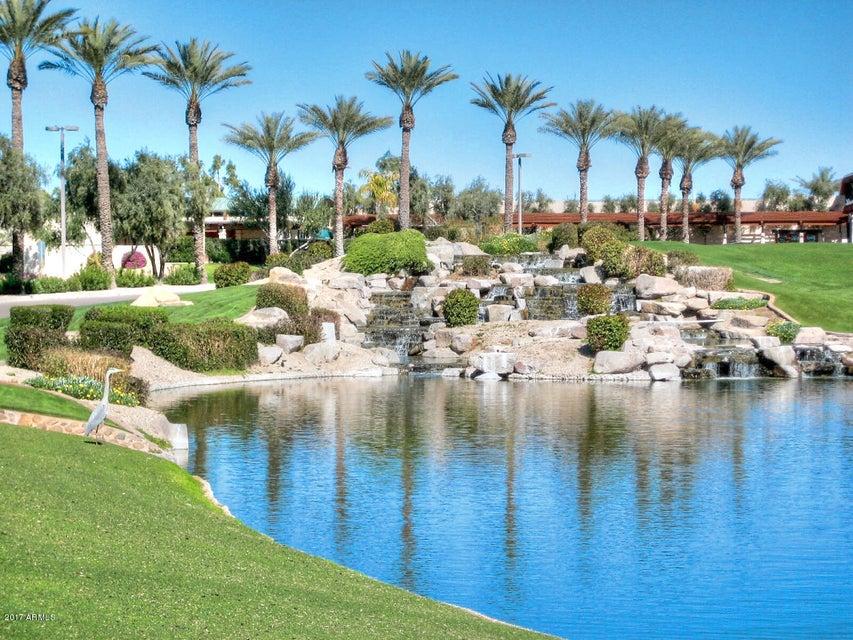MLS 5575326 2321 W DESERT BROOM Place, Chandler, AZ 4 Bedrooms