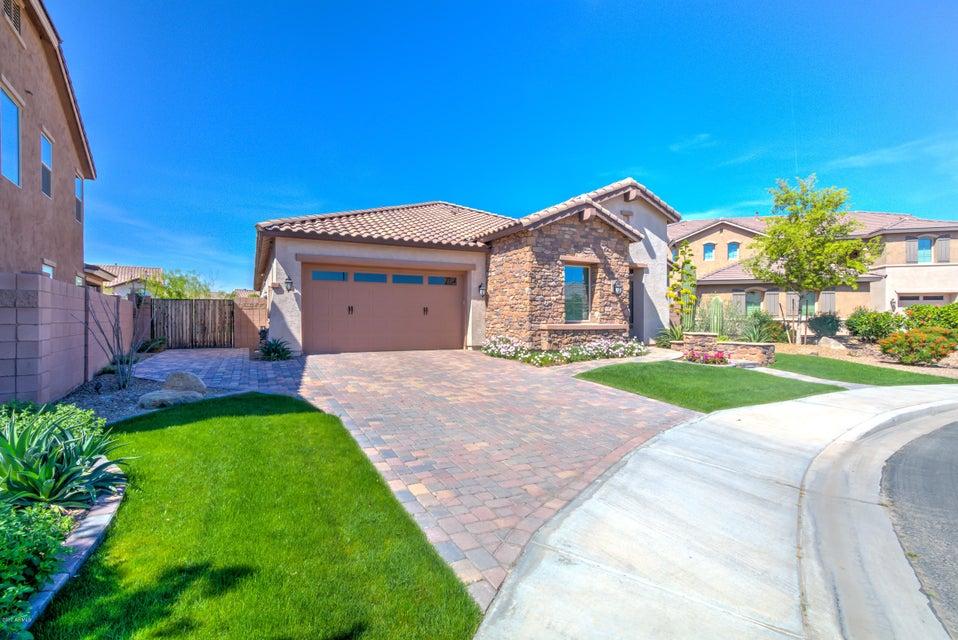 4024 S CAMELLIA Drive, Chandler, AZ 85248