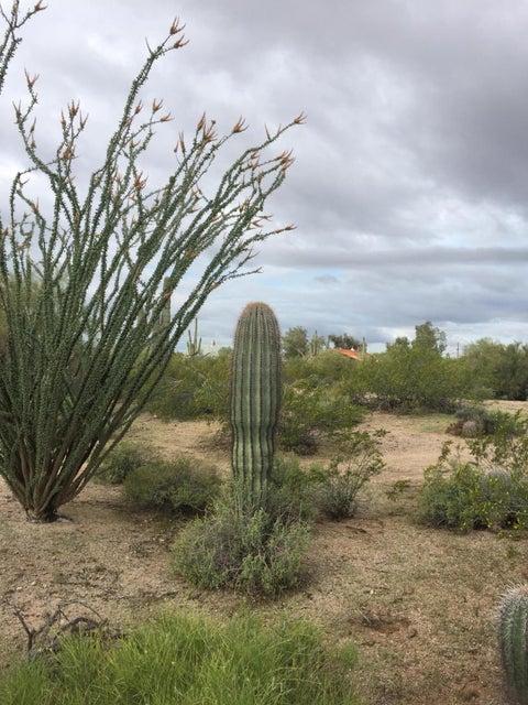 7914 E OASIS Street, Mesa, AZ 85207
