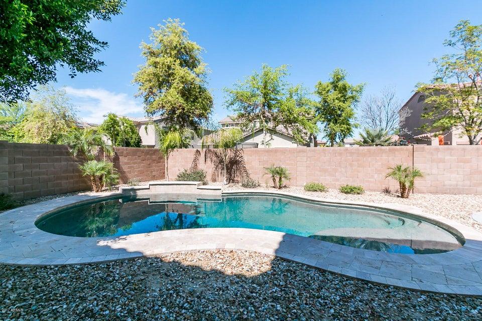 MLS 5579991 13306 W INDIANOLA Avenue, Litchfield Park, AZ Litchfield Park AZ Private Pool