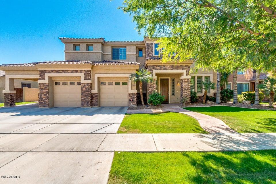 365 W BLUEBIRD Drive, Chandler, AZ 85286