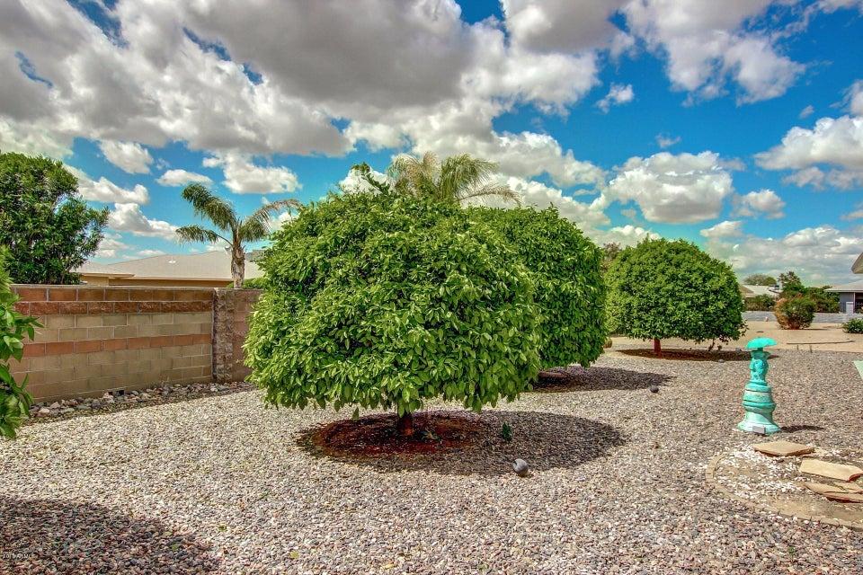 MLS 5580743 17410 N Hitching Post Drive, Sun City, AZ 85373