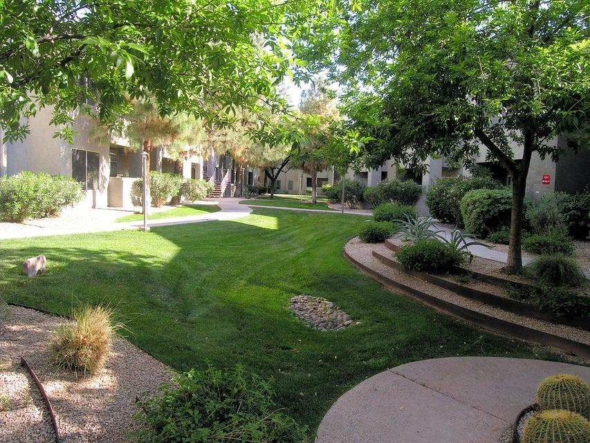 MLS 5580687 1295 N ASH Street Unit 611, Gilbert, AZ Gilbert AZ Affordable