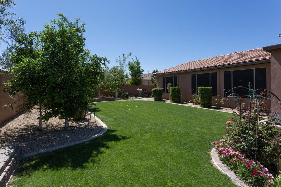 MLS 5584025 2731 N 144TH Drive, Goodyear, AZ 85395 Goodyear AZ Palm Valley