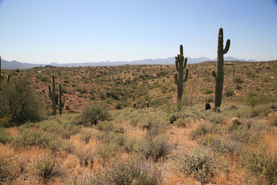 13xxx N Ambush Lane Fort Mcdowell, AZ 85264 - MLS #: 5584583