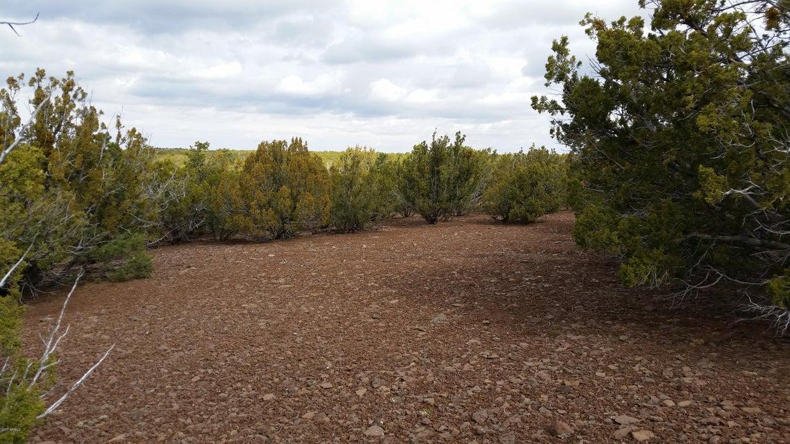 Lot 110 Ranch Road Vernon, AZ 85940 - MLS #: 5585202