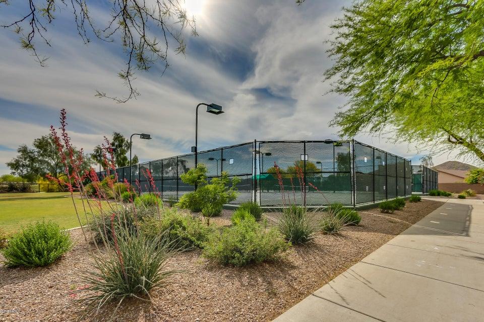 MLS 5586295 184 W Ironhorse Lane, San Tan Valley, AZ 85143 San Tan Valley AZ Solera