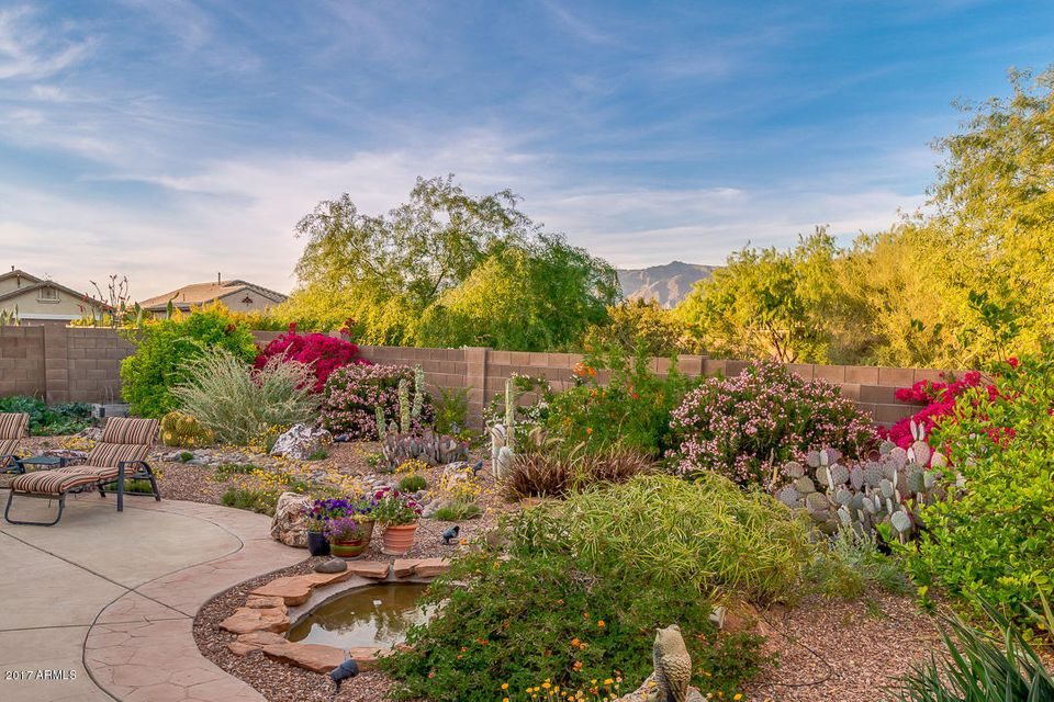 8297 S DESERT PRESERVE Court, Gold Canyon, AZ 85118