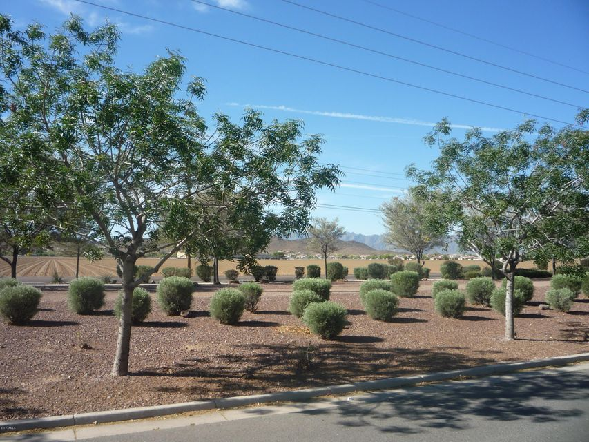 MLS 5577625 4040 W MILADA Drive, Laveen, AZ 85339 Laveen AZ Four Bedroom
