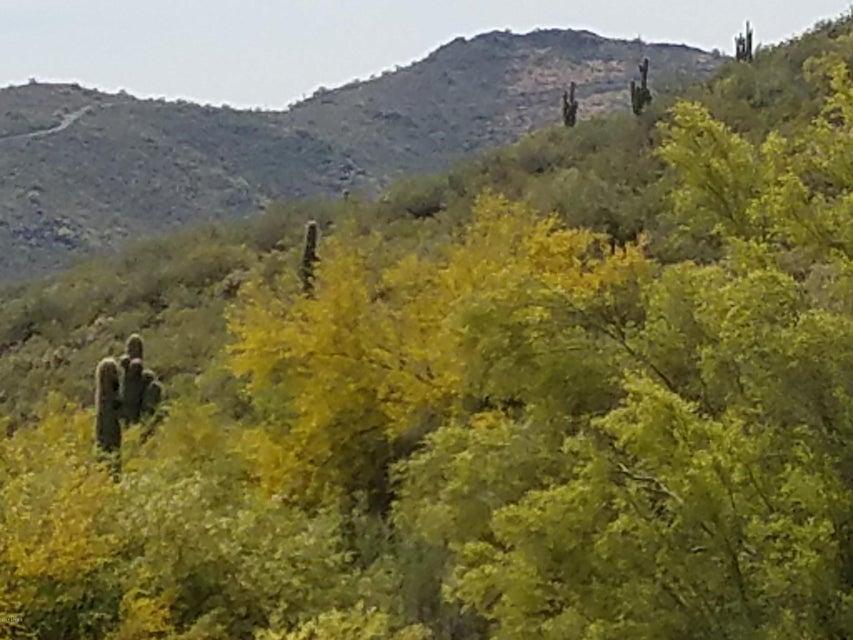 MLS 5576445 14644 N CORAL GABLES Drive, Phoenix, AZ 85023 Phoenix AZ Moon Valley