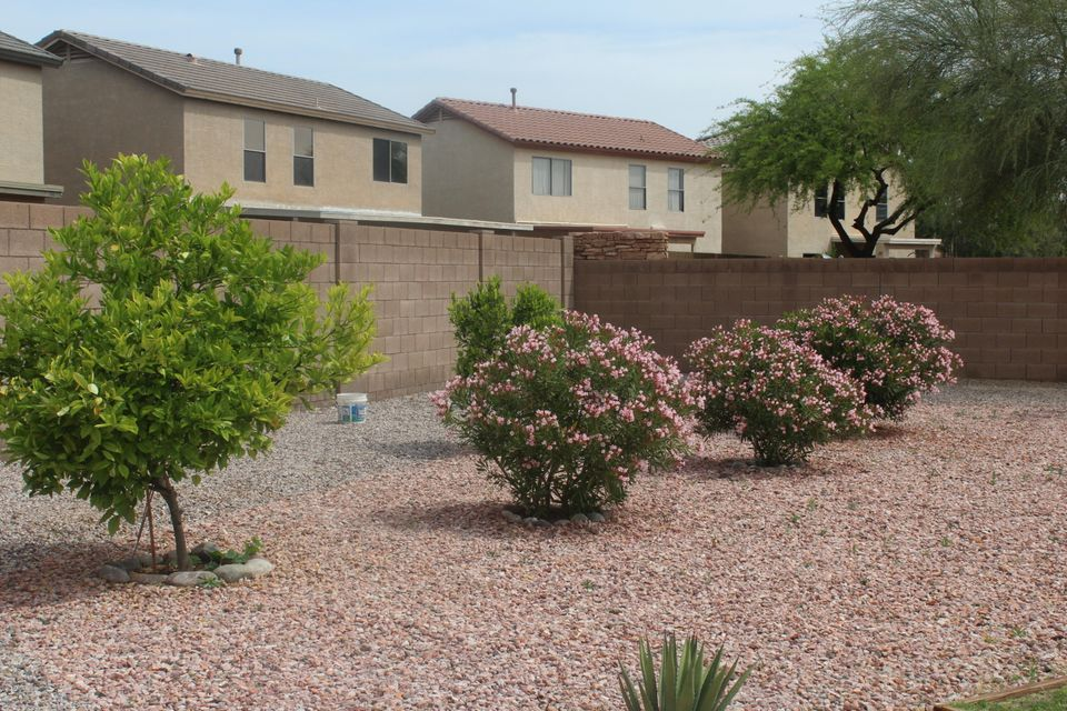 MLS 5589040 5113 N 125TH Drive, Litchfield Park, AZ 85340 Litchfield Park AZ Affordable