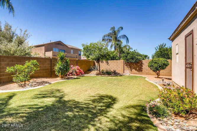 MLS 5590177 2143 E WINGED FOOT Drive, Chandler, AZ 85249 Chandler AZ Cooper Commons