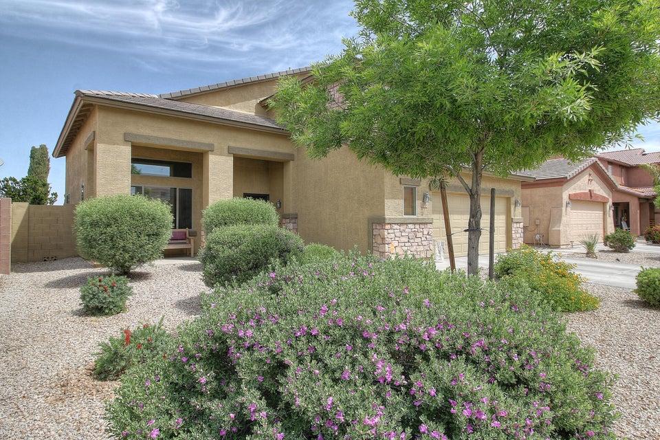 MLS 5590701 1774 W VINEYARD PLAINS Drive, Queen Creek, AZ Skyline Ranch AZ Eco-Friendly