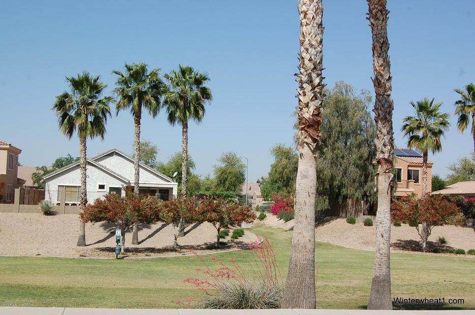 MLS 5590721 17405 W NAVAJO Street, Goodyear, AZ 85338 Goodyear AZ Cottonflower