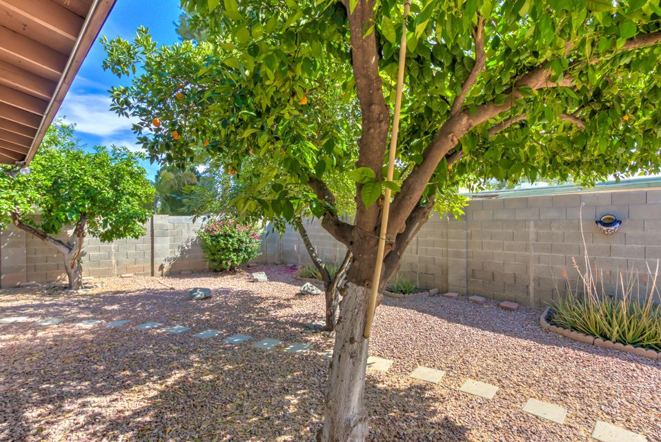 MLS 5592907 1871 W Keating Avenue, Mesa, AZ 85202 Mesa AZ Dobson Ranch