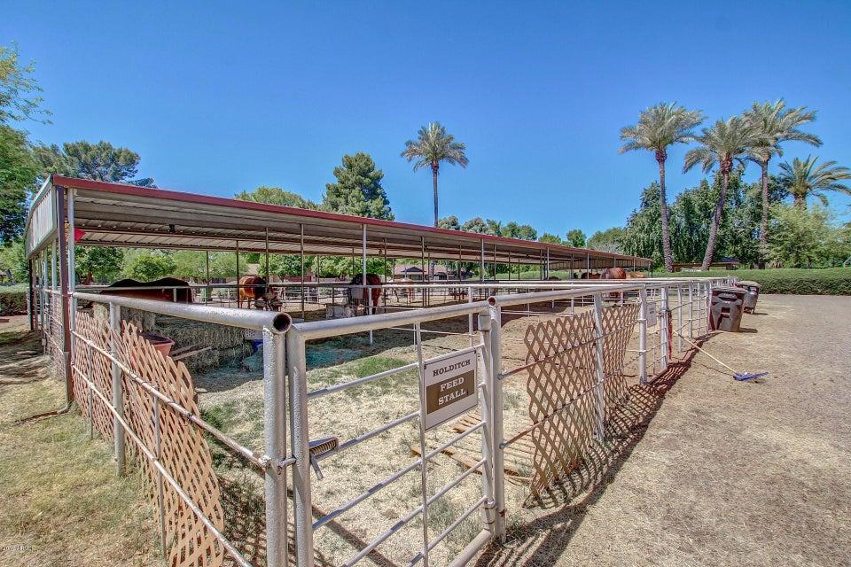 MLS 5593346 8415 S TERRACE Road, Tempe, AZ Tempe AZ Equestrian