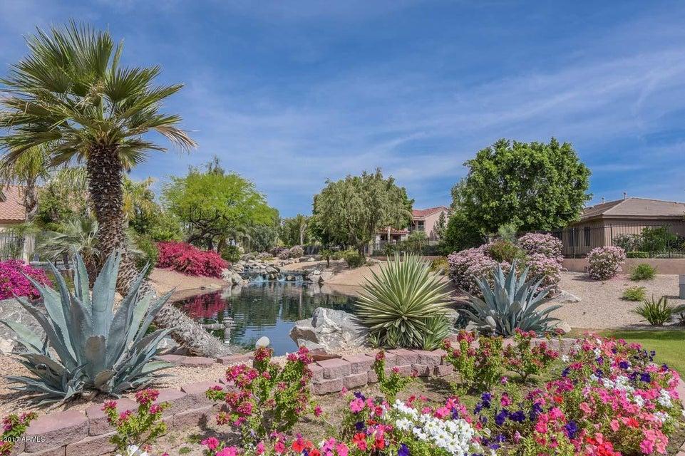 MLS 5593051 4519 N CLEAR CREEK Drive, Litchfield Park, AZ Litchfield Park AZ Scenic
