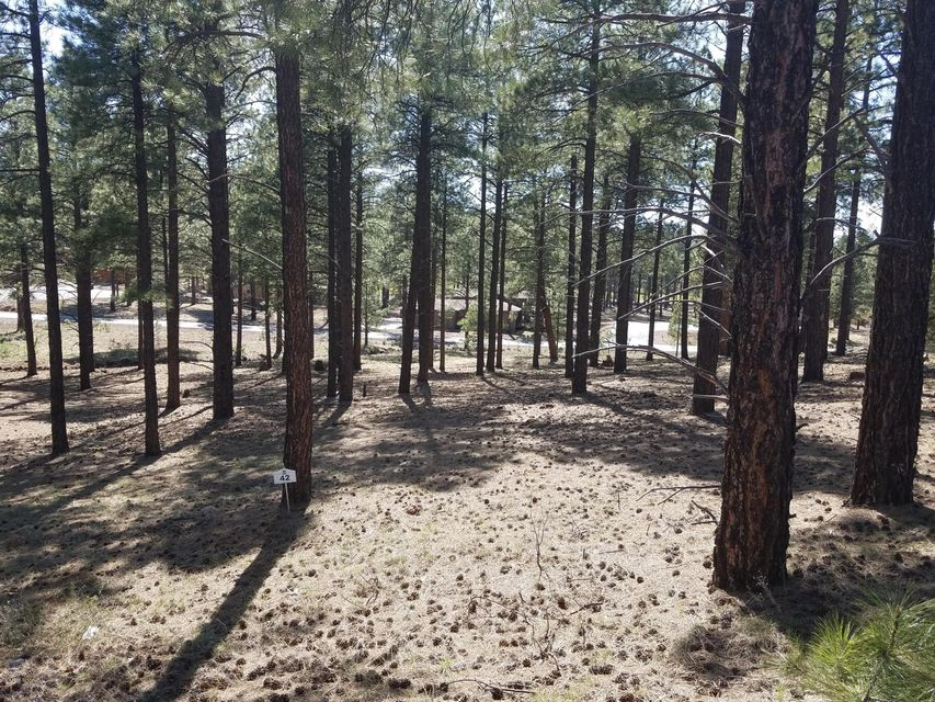 MLS 5593928 3755 S BRIDLE Path, Flagstaff, AZ Flagstaff AZ Newly Built