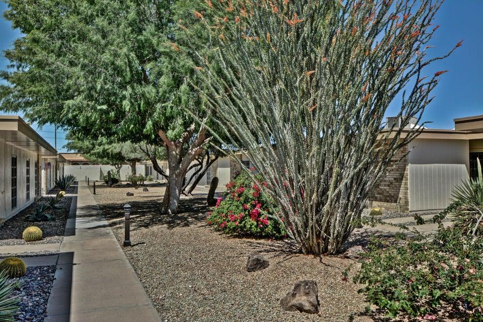 10134 W CAMPANA Drive, Sun City, AZ 85351
