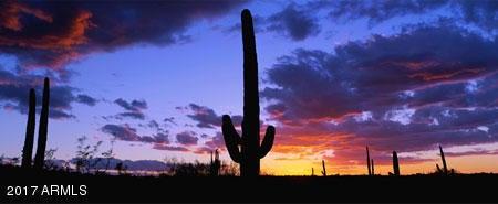 MLS 5595918 19708 N JOJOBA Court, Surprise, AZ Surprise AZ Luxury