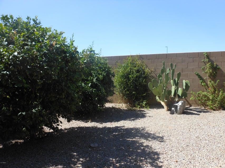 MLS 5595619 486 N SANTIAGO Trail, Casa Grande, AZ Casa Grande AZ Golf