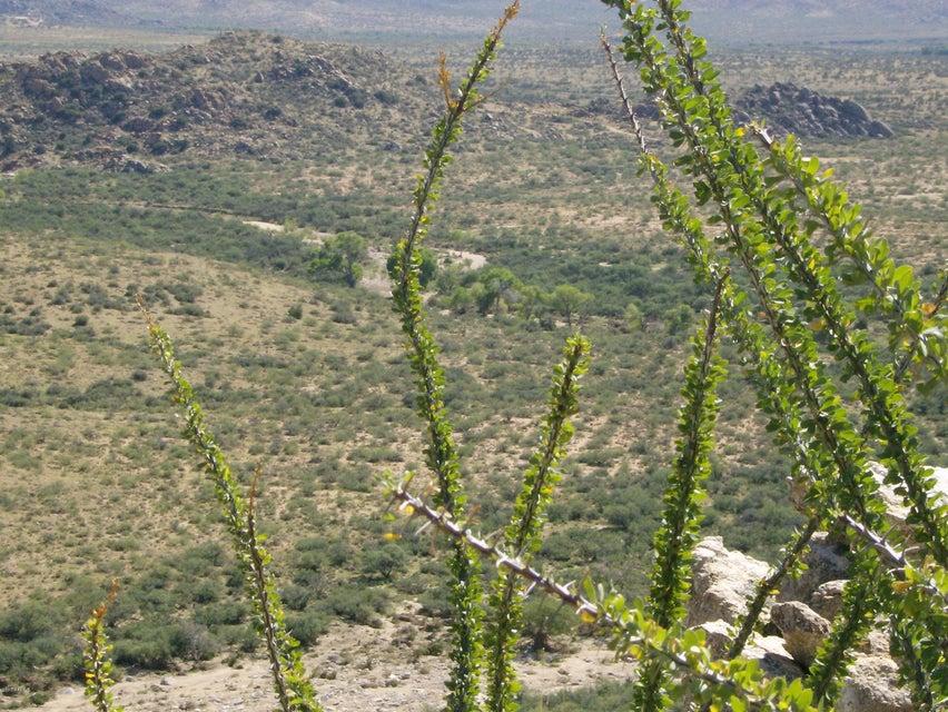 S Date Creek Road Lot 40 acres, Congress, AZ 85332
