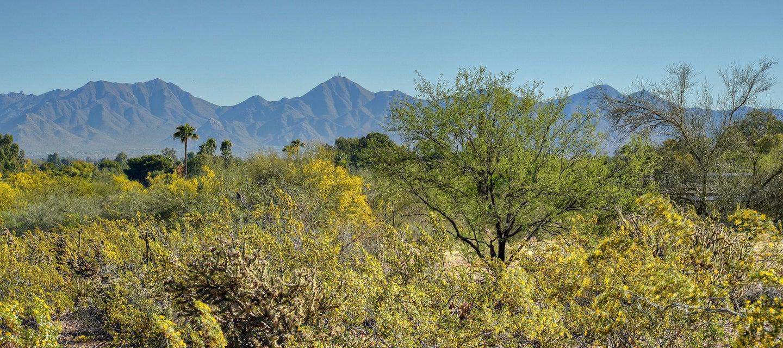 7815 N IRONWOOD Drive Lot 8, Paradise Valley, AZ 85253
