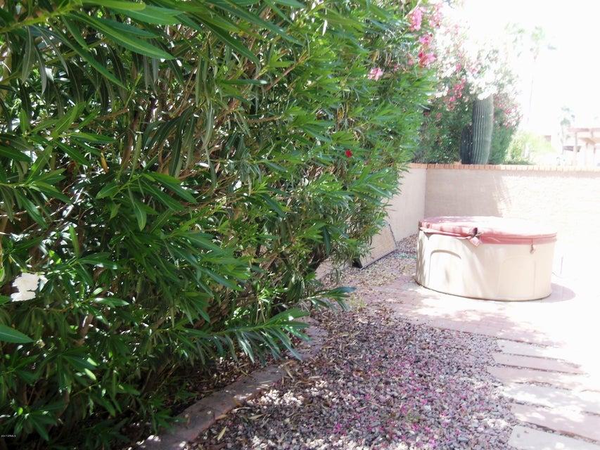 MLS 5595989 14638 N LOVE Court, Fountain Hills, AZ 85268 Fountain Hills AZ Affordable