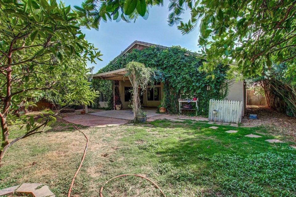 MLS 5596634 5529 N RATTLER Way, Litchfield Park, AZ 85340 Litchfield Park AZ Wigwam Creek
