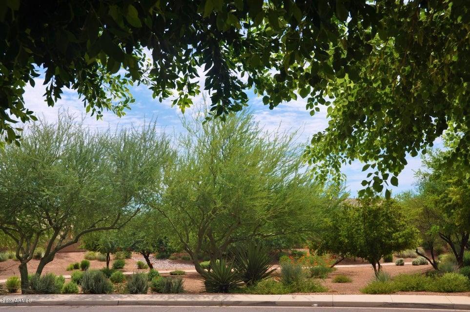MLS 5596358 918 E CARLA VISTA Drive, Gilbert, AZ Gilbert AZ Lindsay Estates
