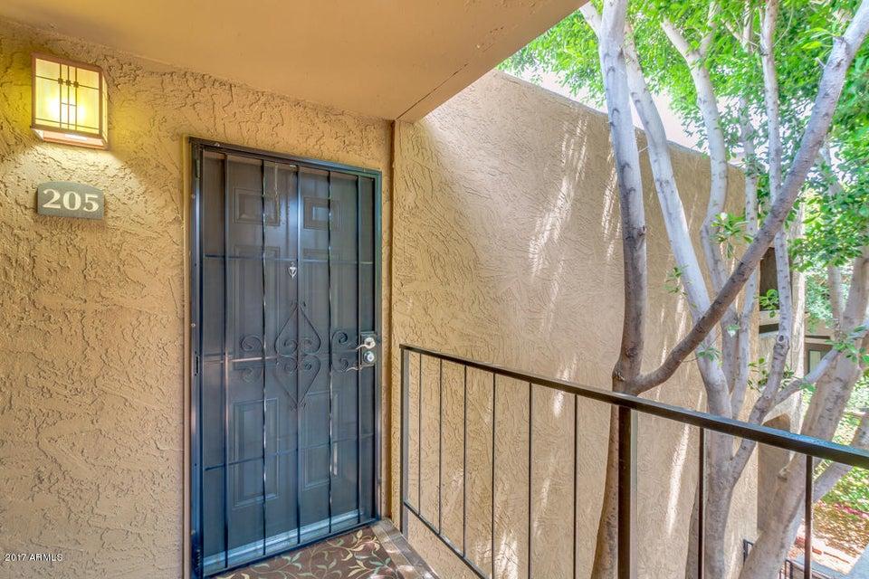 3825 E CAMELBACK Road 205, Phoenix, AZ 85018