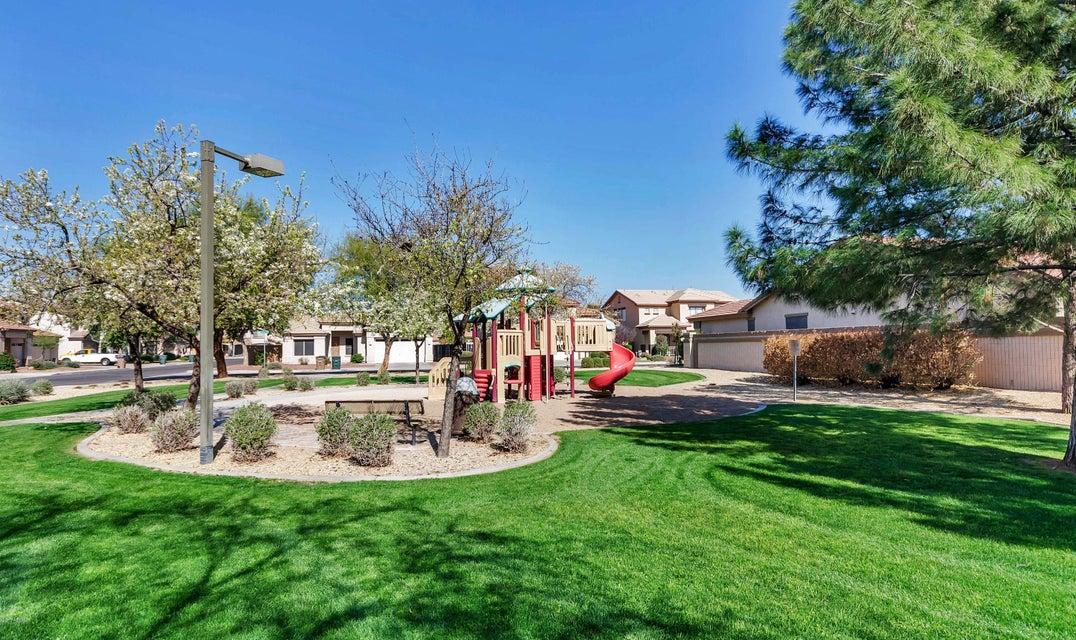 MLS 5598505 12629 W APODACA Drive, Litchfield Park, AZ Litchfield Park AZ Private Pool