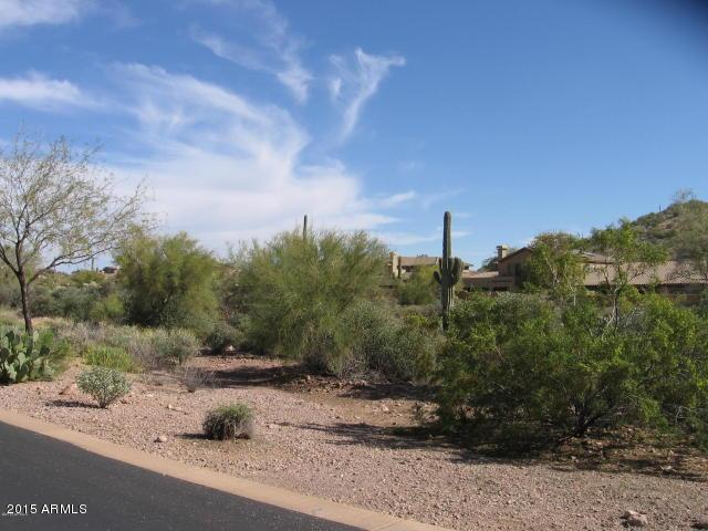 3505 S FIRST WATER Trail Gold Canyon, AZ 85118 - MLS #: 5602150
