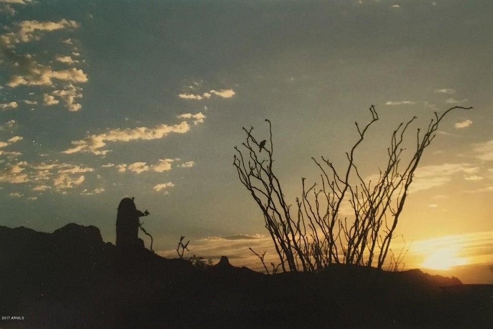 MLS 5601541 4481 N DESERT VIEW Drive, Apache Junction, AZ Apache Junction AZ Equestrian