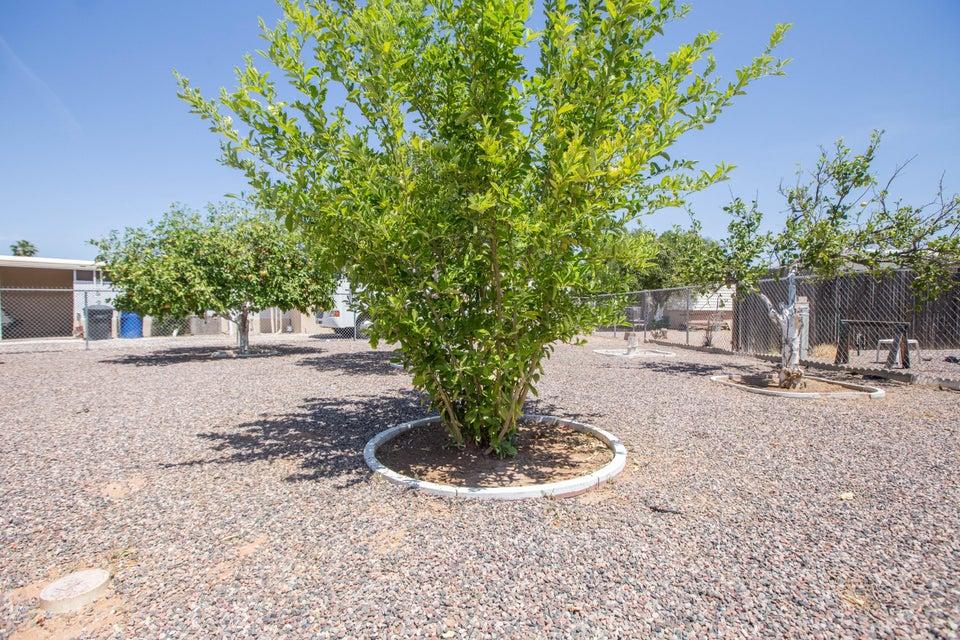 MLS 5601646 5536 E ARBOR Avenue, Mesa, AZ 85206 Mesa AZ Velda Rose Estates