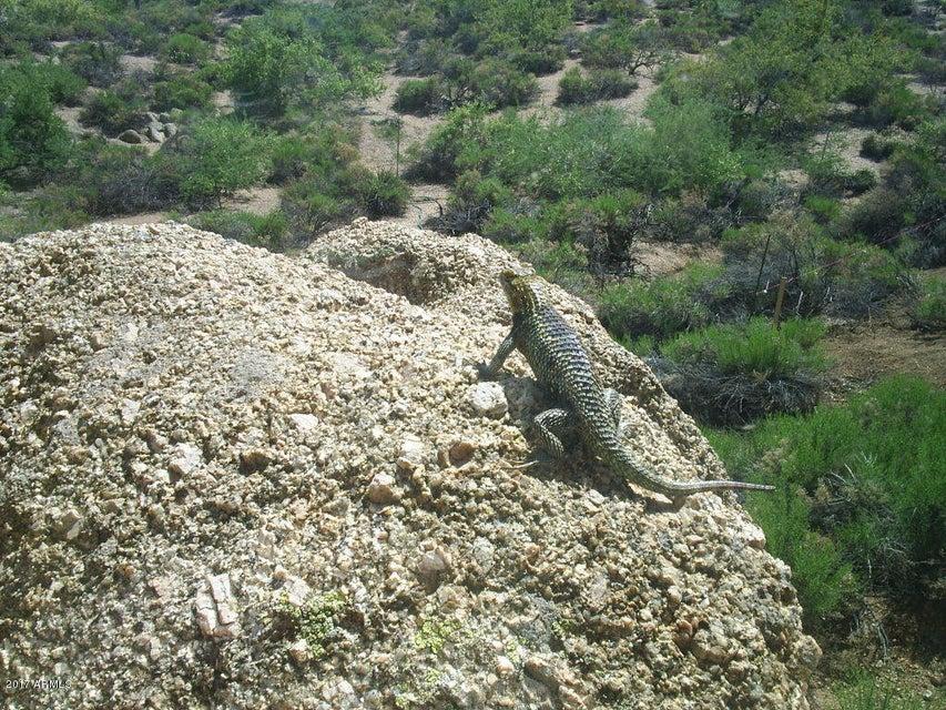 MLS 5600970 11515 E MANANA Road, Cave Creek, AZ 85331 Cave Creek AZ Three Bedroom