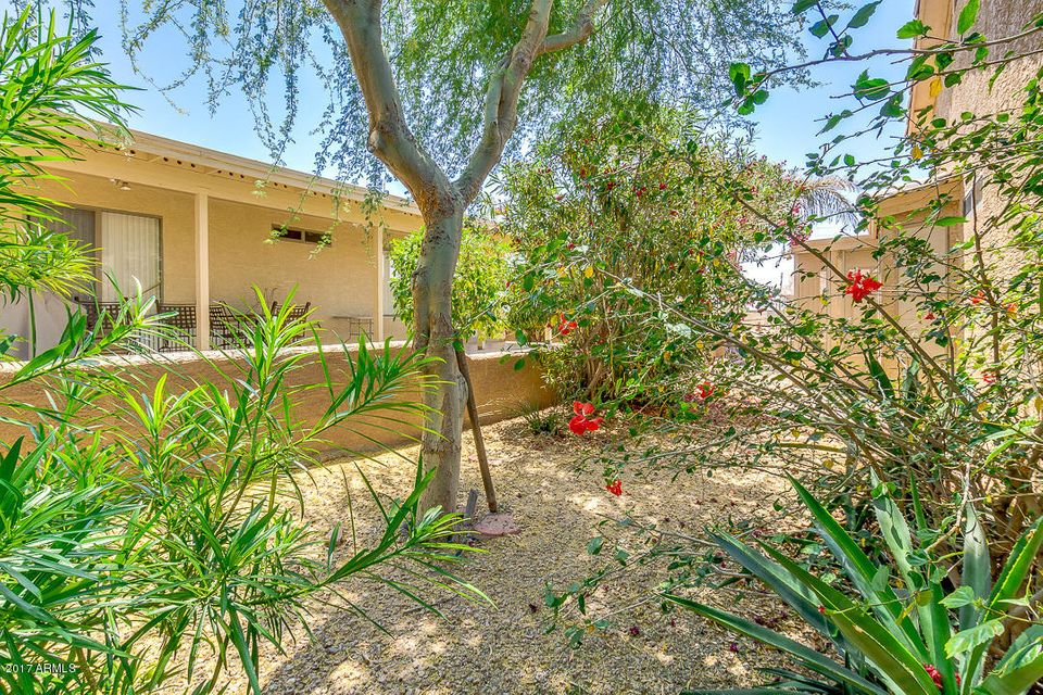 MLS 5602427 2101 S MERIDIAN Road Unit 399, Apache Junction, AZ 85120 Apache Junction AZ Gated