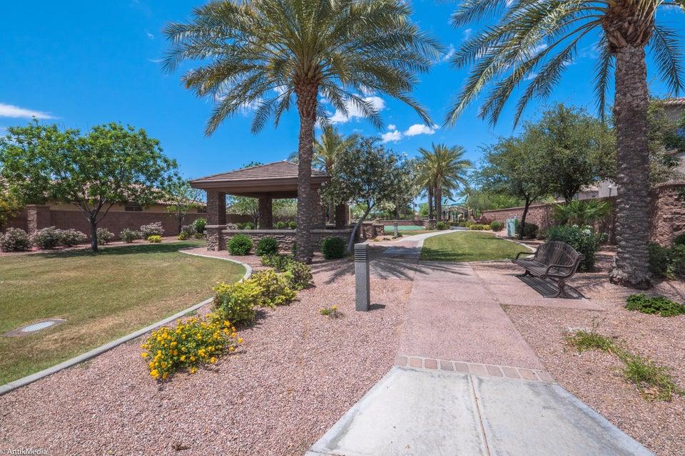 MLS 5603658 177 W LYNX Way, Chandler, AZ 85248 Chandler AZ Fulton Ranch