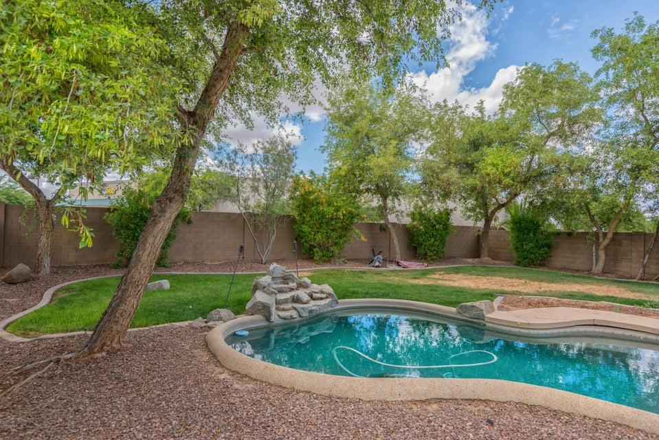 MLS 5604332 31248 N CANDLEWOOD Drive, San Tan Valley, AZ 85143 San Tan Valley AZ Rancho Bella Vista
