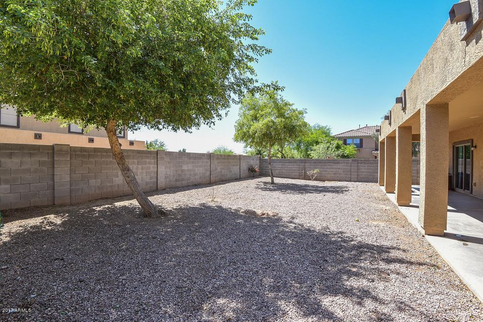 MLS 5604464 14131 N 135TH Lane, Surprise, AZ 85379 Surprise AZ Litchfield Manor