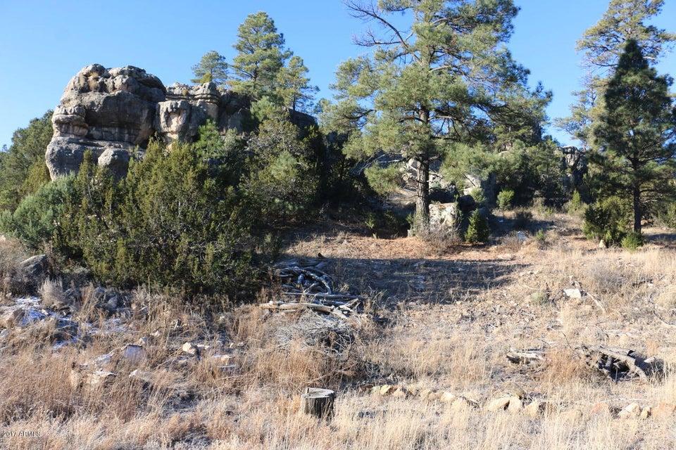 3320 Buckskin Canyon Road Heber, AZ 85928 - MLS #: 5606612