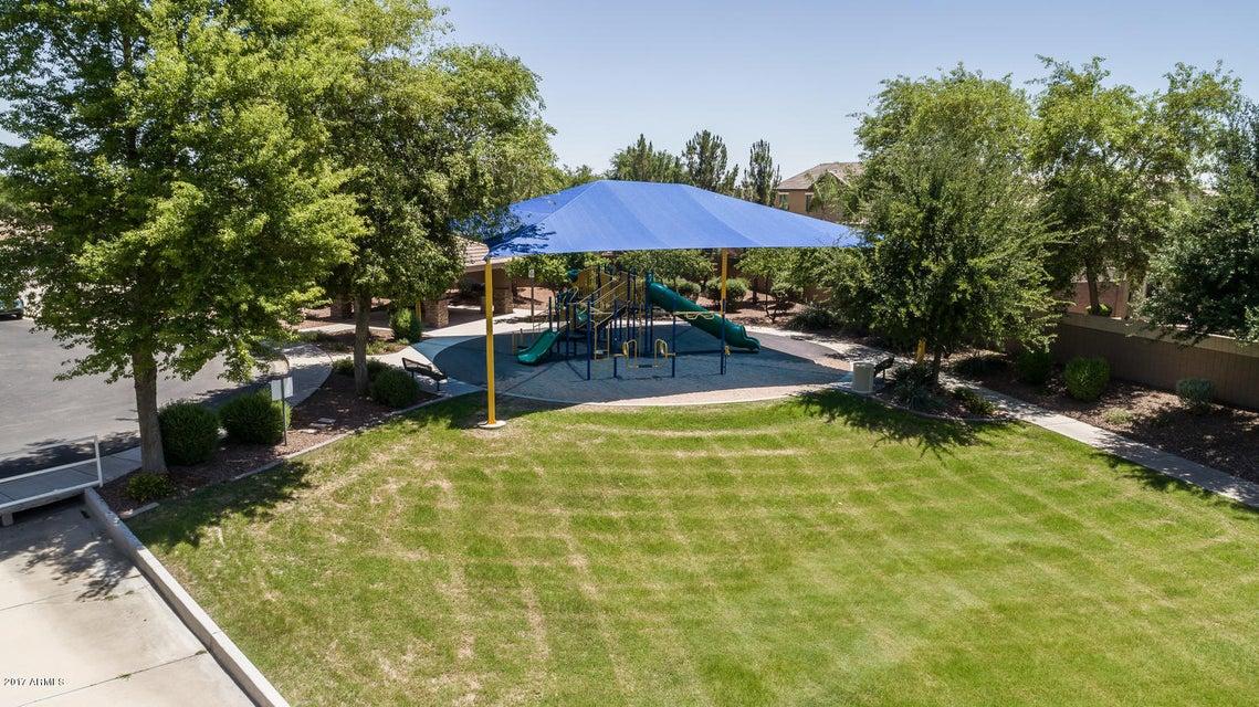 MLS 5607234 13514 W EARLL Drive, Avondale, AZ 85392 Avondale AZ Luxury