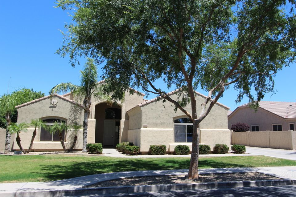 312 W Macaw Drive, Chandler, AZ 85286