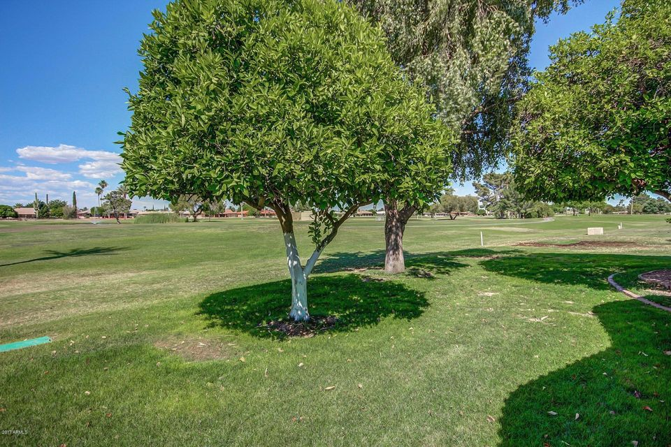 MLS 5609465 10658 W TROPICANA Circle, Sun City, AZ Sun City AZ Scenic