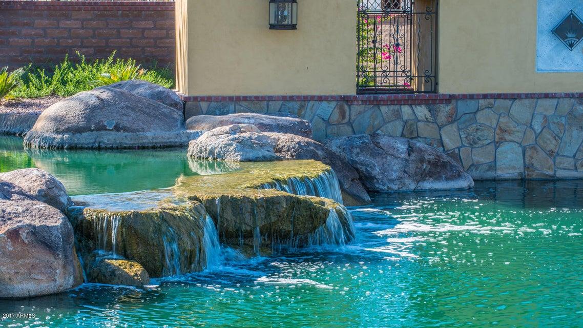 MLS 5609934 932 W Yosemite Drive, Chandler, AZ Community Pool