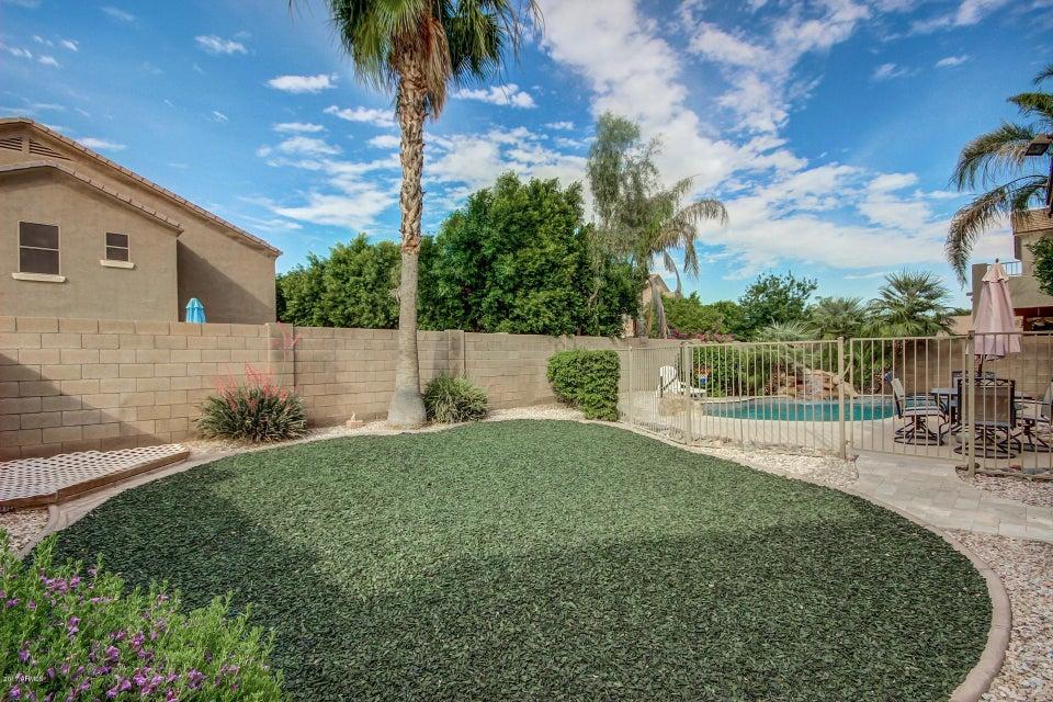 MLS 5610596 1004 E Stottler Court, Gilbert, AZ 85296 Gilbert AZ Neely Farms