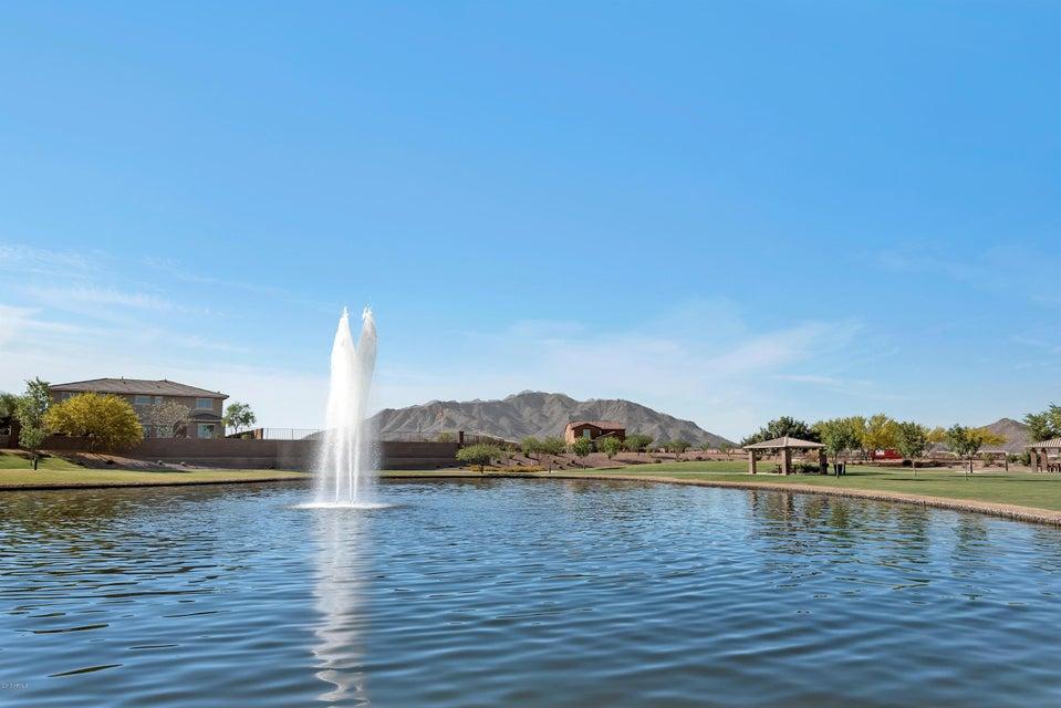 MLS 5610966 2659 E HICKORY Street, Gilbert, AZ 85298 Gilbert AZ Adora Trails