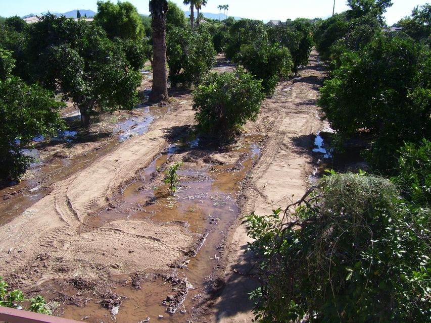 1827 N Val Vista Drive, Mesa, AZ 85215