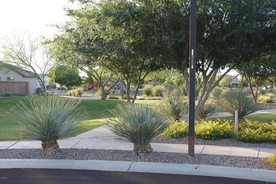 MLS 5611696 17521 W BANFF Lane, Surprise, AZ Surprise AZ Equestrian